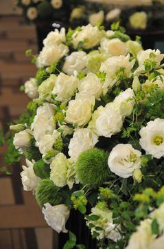 白い花全面.jpegのサムネイル画像
