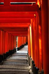 京都赤い鳥居.jpg